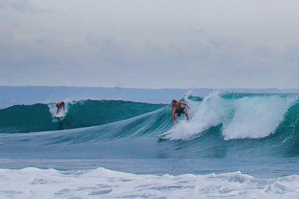 surf indo